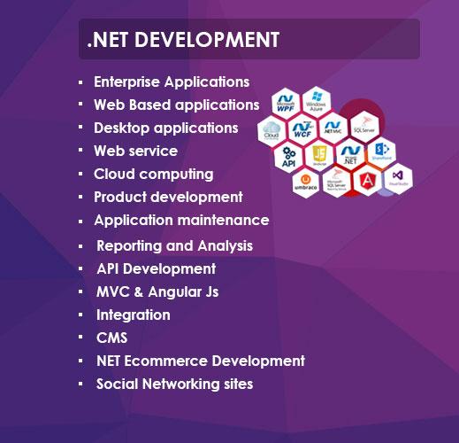 Custom Software Development, Website Design & Development Company